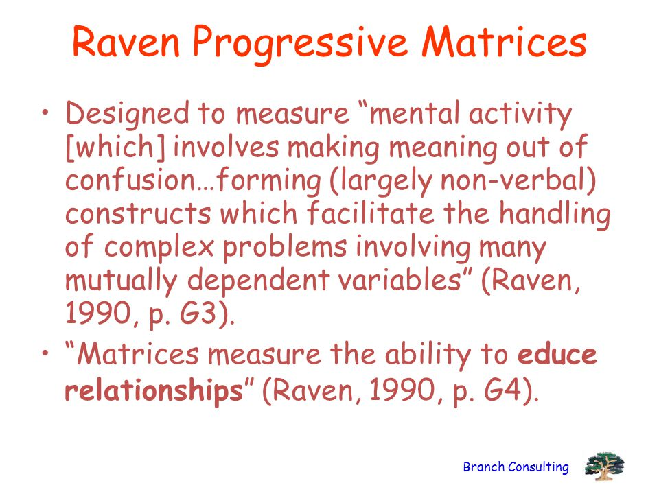 Branch Consulting Raven Progressive Matrices Designed to measure mental activity [which] involves making meaning out of confusion…forming (largely non-verbal) constructs which facilitate the handling of complex problems involving many mutually dependent variables (Raven, 1990, p.
