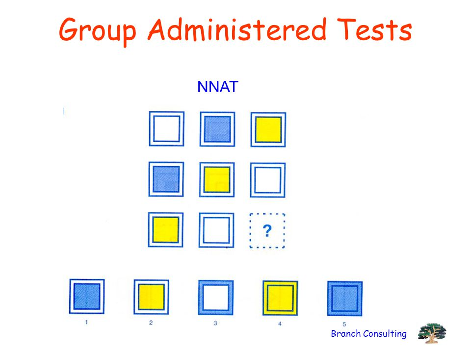 Branch Consulting Group Administered Tests NNAT