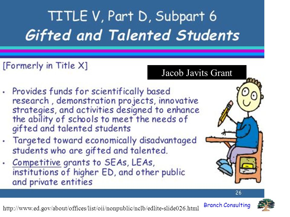 Branch Consulting http://www.ed.gov/about/offices/list/oii/nonpublic/nclb/edlite-slide026.html Jacob Javits Grant