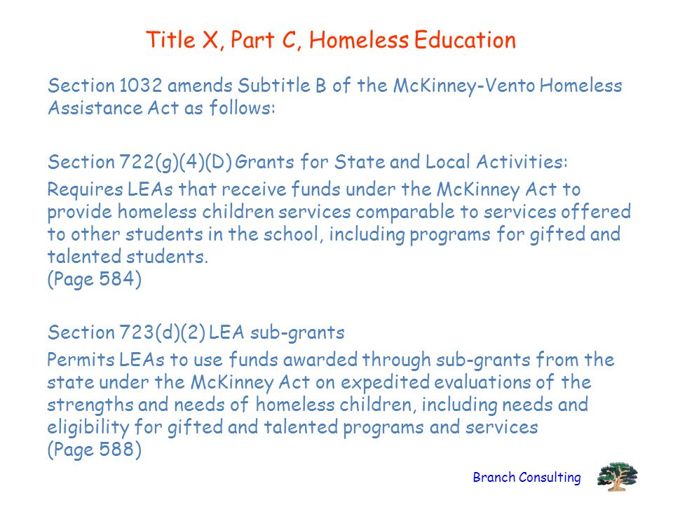 Branch Consulting Title X, Part C, Homeless Education Section 1032 amends Subtitle B of the McKinney-Vento Homeless Assistance Act as follows: Section 722(g)(4)(D) Grants for State and Local Activities: Requires LEAs that receive funds under the McKinney Act to provide homeless children services comparable to services offered to other students in the school, including programs for gifted and talented students.