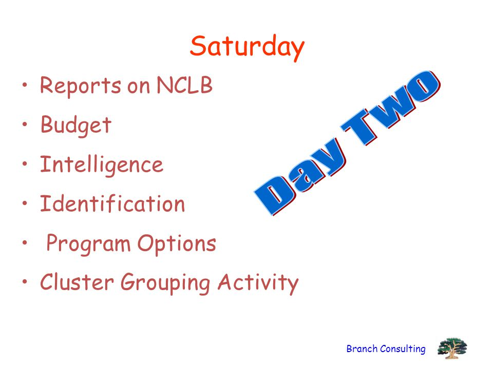 Branch Consulting Saturday Reports on NCLB Budget Intelligence Identification Program Options Cluster Grouping Activity