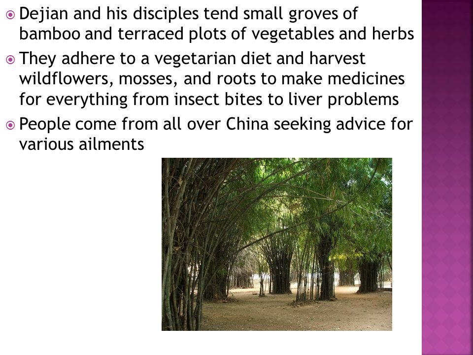  Dejian and his disciples tend small groves of bamboo and terraced plots of vegetables and herbs  They adhere to a vegetarian diet and harvest wildf