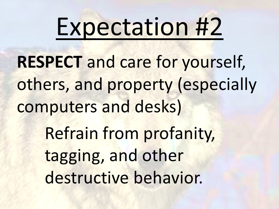 Expectation #2 RESPECT and care for yourself, others, and property (especially computers and desks) Refrain from profanity, tagging, and other destructive behavior.