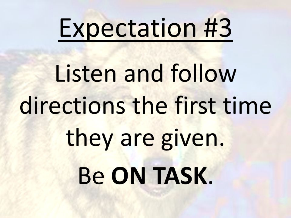 Expectation #3 Listen and follow directions the first time they are given. Be ON TASK.