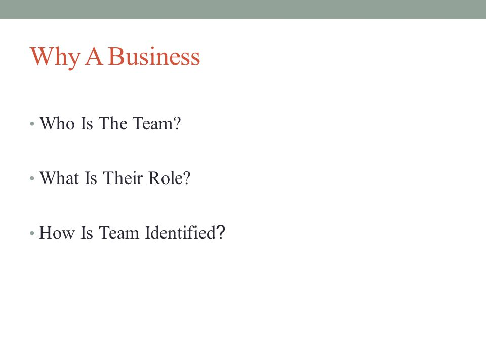 Why A Business Who Is The Team? What Is Their Role? How Is Team Identified ?