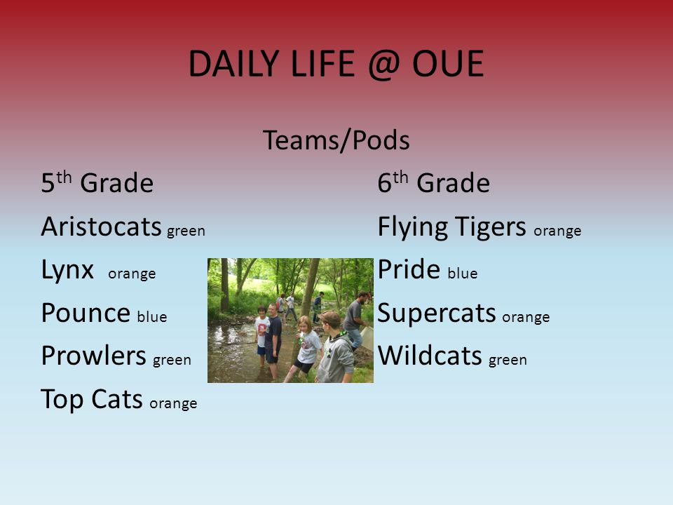 DAILY LIFE @ OUE Teams/Pods 5 th Grade6 th Grade Aristocats green Flying Tigers orange Lynx orange Pride blue Pounce blue Supercats orange Prowlers gr