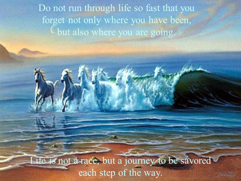 Life is not a race, but a journey to be savored each step of the way. Do not run through life so fast that you forget not only where you have been, bu