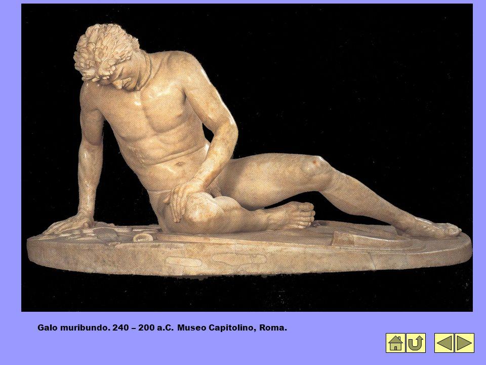 Galo muribundo. 240 – 200 a.C. Museo Capitolino, Roma.