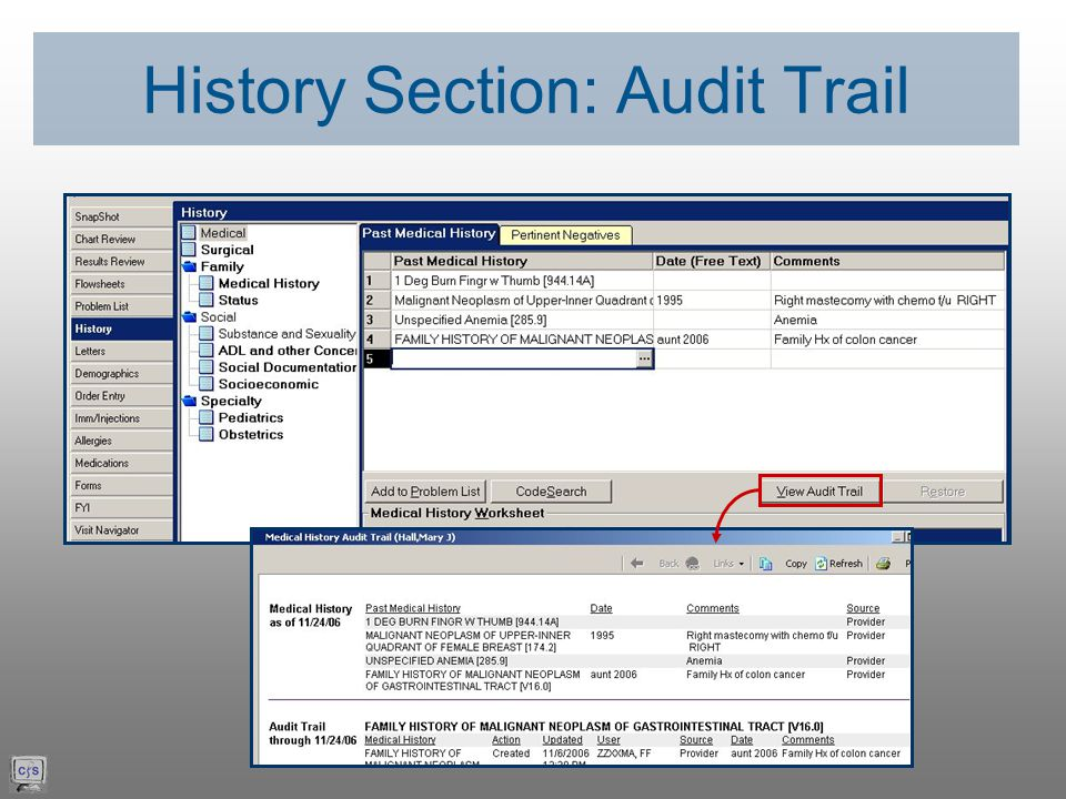 History Section: Audit Trail