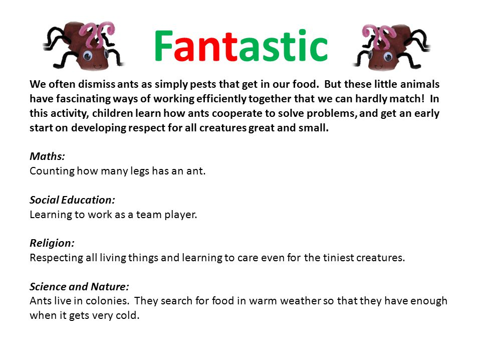 Fantastic We often dismiss ants as simply pests that get in our food.