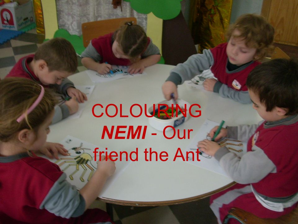 COLOURING NEMI - Our friend the Ant