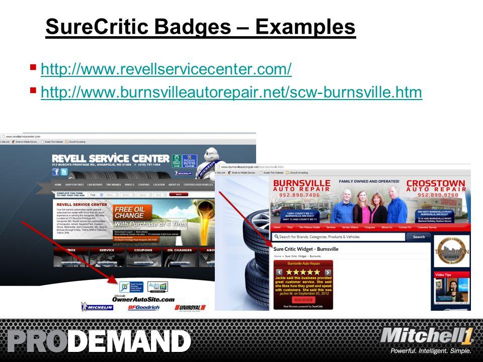 38 SureCritic Badges – Examples  http://www.revellservicecenter.com/ http://www.revellservicecenter.com/  http://www.burnsvilleautorepair.net/scw-burnsville.htm http://www.burnsvilleautorepair.net/scw-burnsville.htm