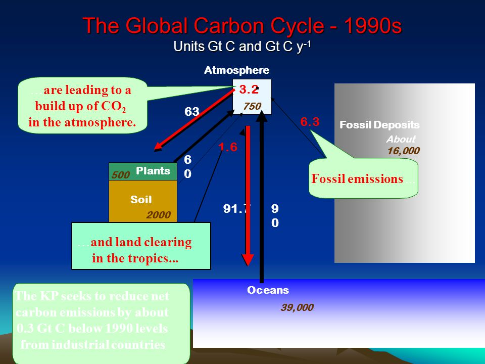 The Global Carbon Cycle - 1990s Units Gt C and Gt C y -1 The KP seeks to reduce net carbon emissions by about 0.3 Gt C below 1990 levels from industrial countries Atmosphere Fossil Deposits 6.3 63 91.7 6060 9090 3.2 Plants Soil Oceans 750 500 2000 39,000 About 16,000 1.6 …are leading to a build up of CO 2 in the atmosphere.