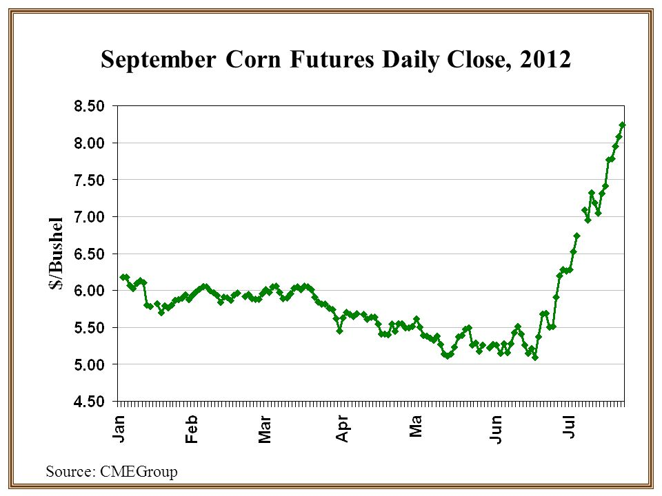 September Corn Futures Daily Close, 2012 Source: CMEGroup
