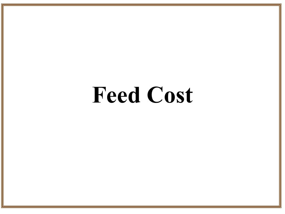 Feed Cost