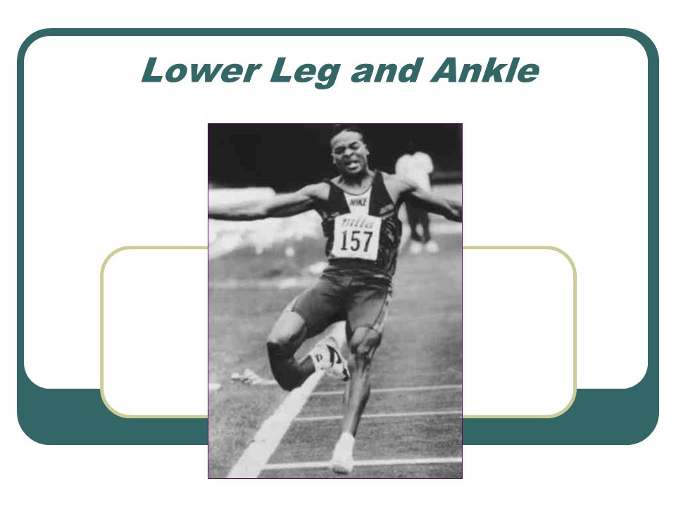 Lower Leg and Ankle