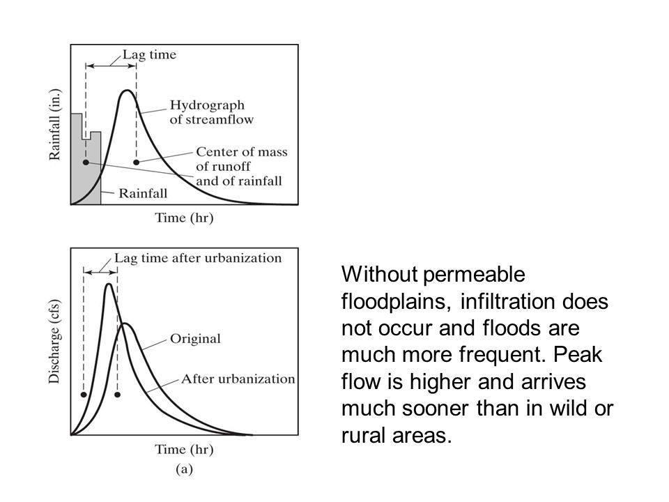 Without permeable floodplains, infiltration does not occur and floods are much more frequent.