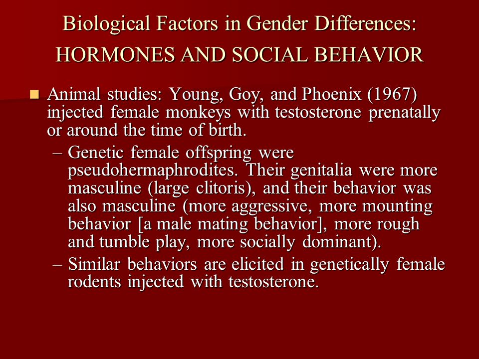 Biological Factors in Gender Differences: HORMONES AND SOCIAL BEHAVIOR Animal studies: Young, Goy, and Phoenix (1967) injected female monkeys with tes