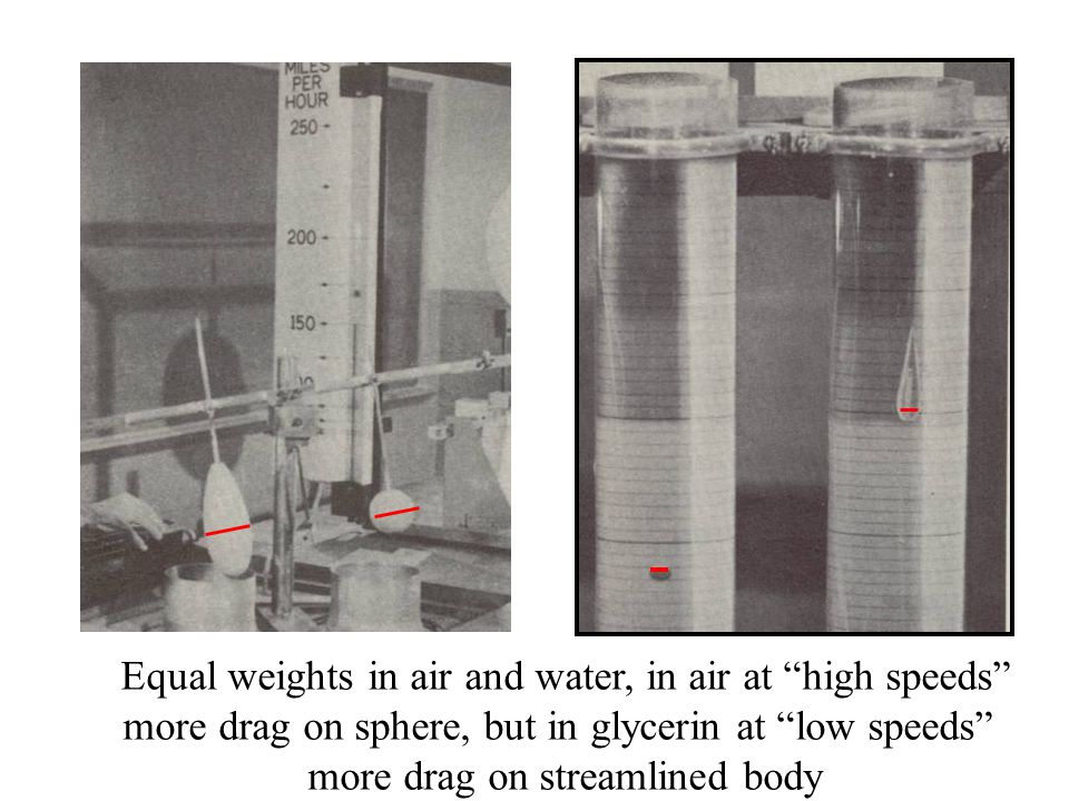Equal weights in air and water, in air at high speeds more drag on sphere, but in glycerin at low speeds more drag on streamlined body