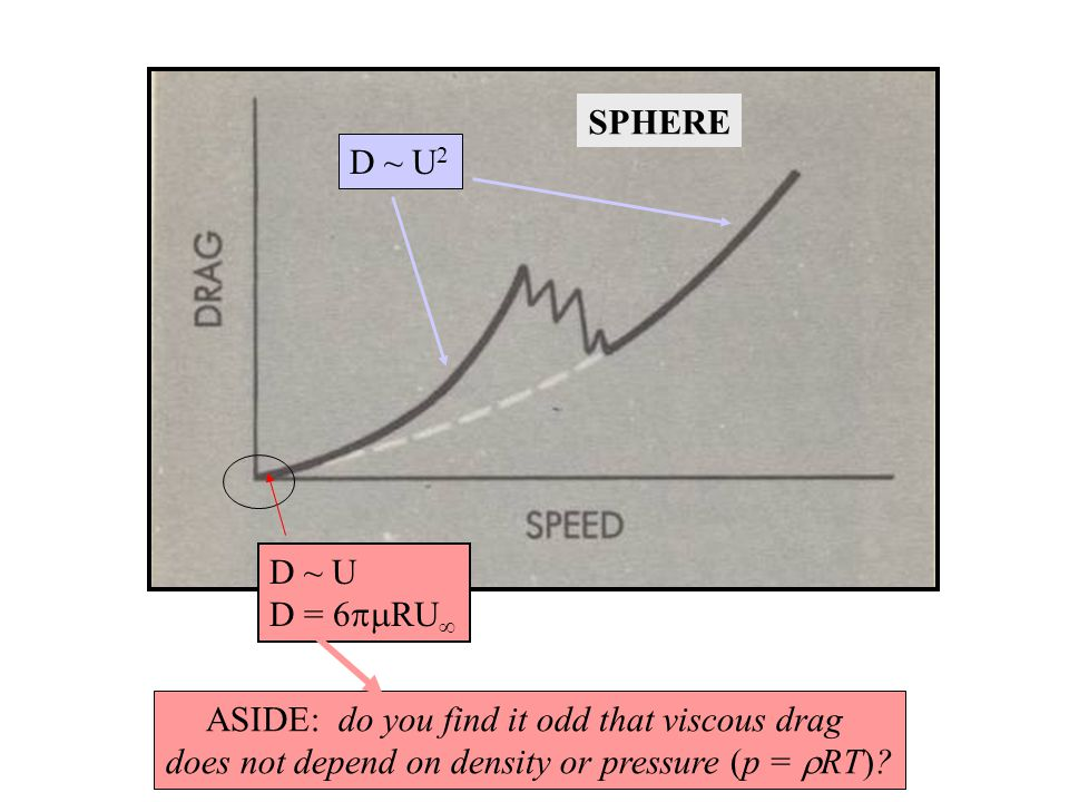 D ~ U 2 D ~ U D = 6  RU  ASIDE: do you find it odd that viscous drag does not depend on density or pressure (p =  RT).