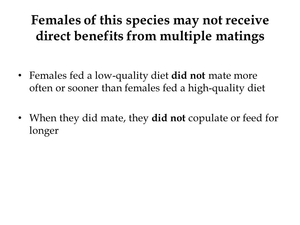 No significant effects of diet treatment on any of the mating variables
