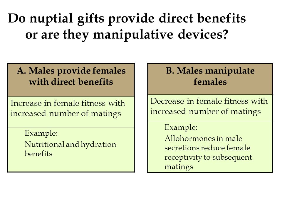 Do nuptial gifts provide direct benefits or are they manipulative devices.