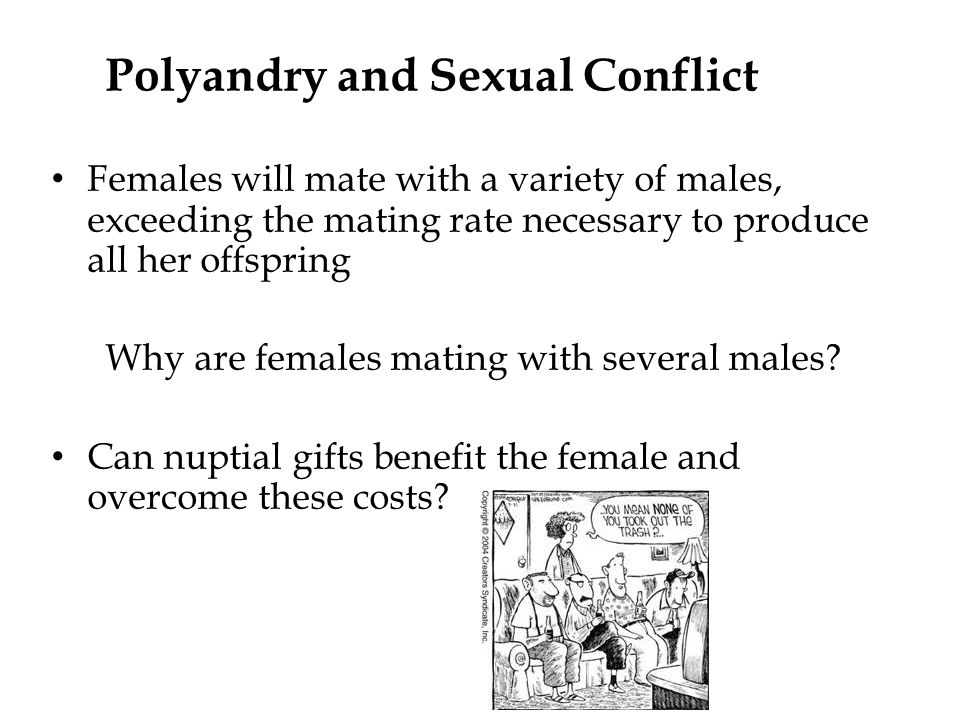 Polyandry and Sexual Conflict Females will mate with a variety of males, exceeding the mating rate necessary to produce all her offspring Why are females mating with several males.