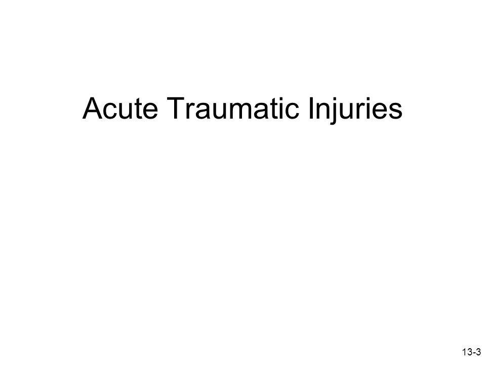 13-3 Acute Traumatic Injuries