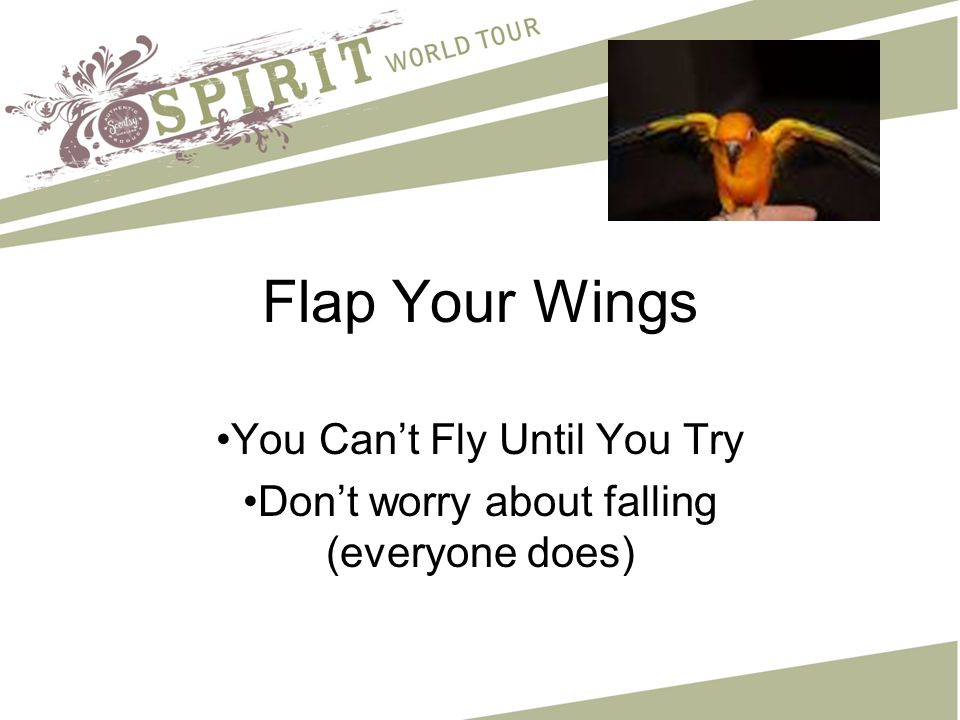 Flap Your Wings You Can't Fly Until You Try Don't worry about falling (everyone does)