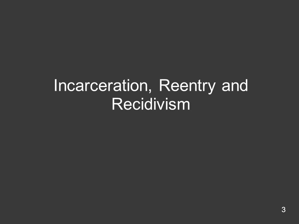 Incarceration, Reentry and Recidivism 3