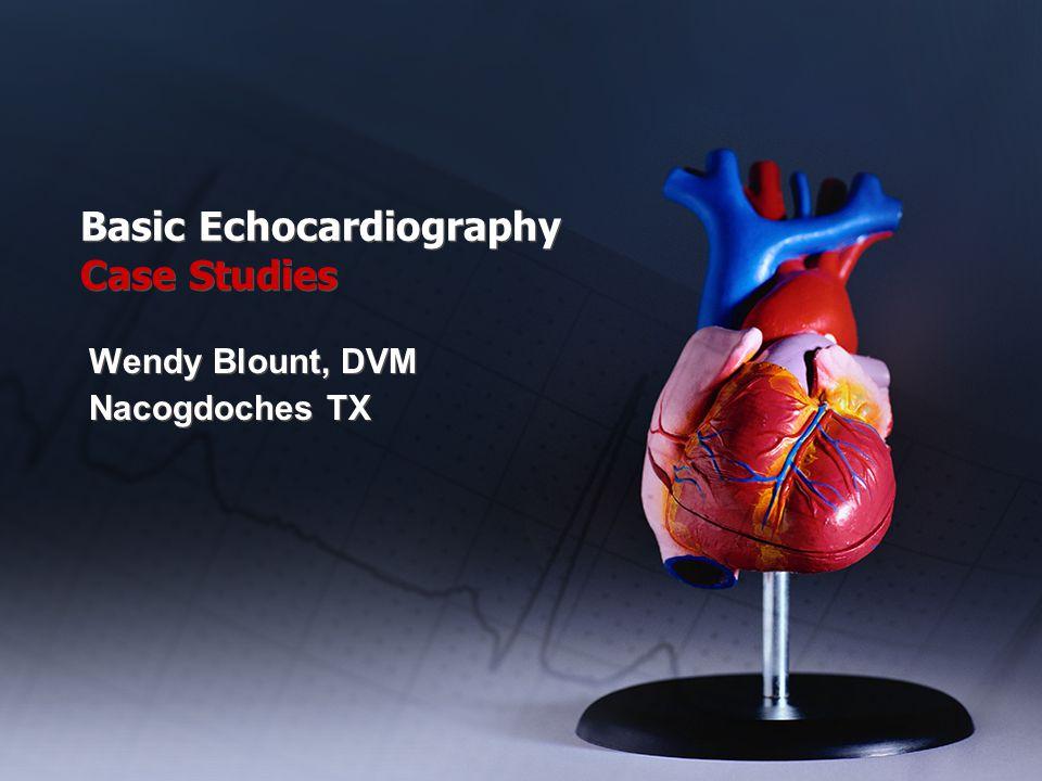 Basic Echocardiography Case Studies Wendy Blount, DVM Nacogdoches TX Wendy Blount, DVM Nacogdoches TX