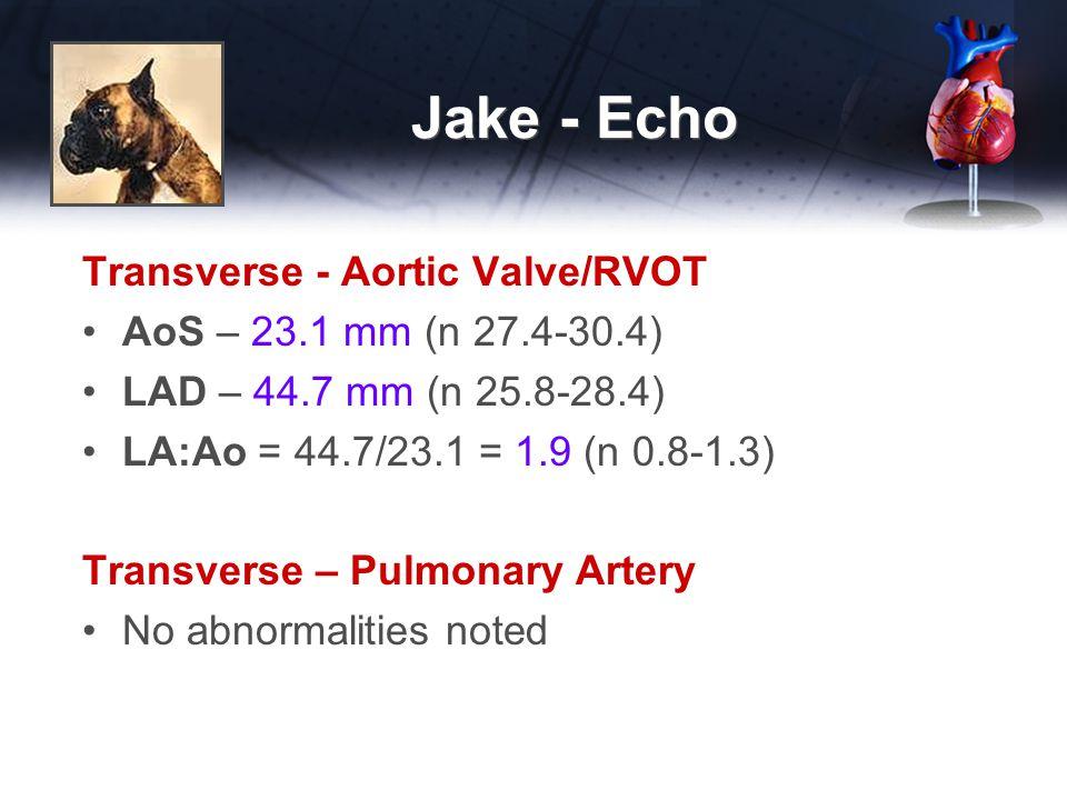 Jake - Echo Transverse - Aortic Valve/RVOT AoS – 23.1 mm (n 27.4-30.4) LAD – 44.7 mm (n 25.8-28.4) LA:Ao = 44.7/23.1 = 1.9 (n 0.8-1.3) Transverse – Pulmonary Artery No abnormalities noted