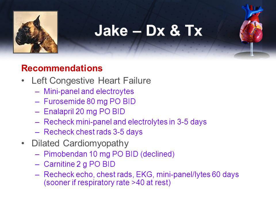 Jake – Dx & Tx Recommendations Left Congestive Heart Failure –Mini-panel and electroytes –Furosemide 80 mg PO BID –Enalapril 20 mg PO BID –Recheck mini-panel and electrolytes in 3-5 days –Recheck chest rads 3-5 days Dilated Cardiomyopathy –Pimobendan 10 mg PO BID (declined) –Carnitine 2 g PO BID –Recheck echo, chest rads, EKG, mini-panel/lytes 60 days (sooner if respiratory rate >40 at rest)