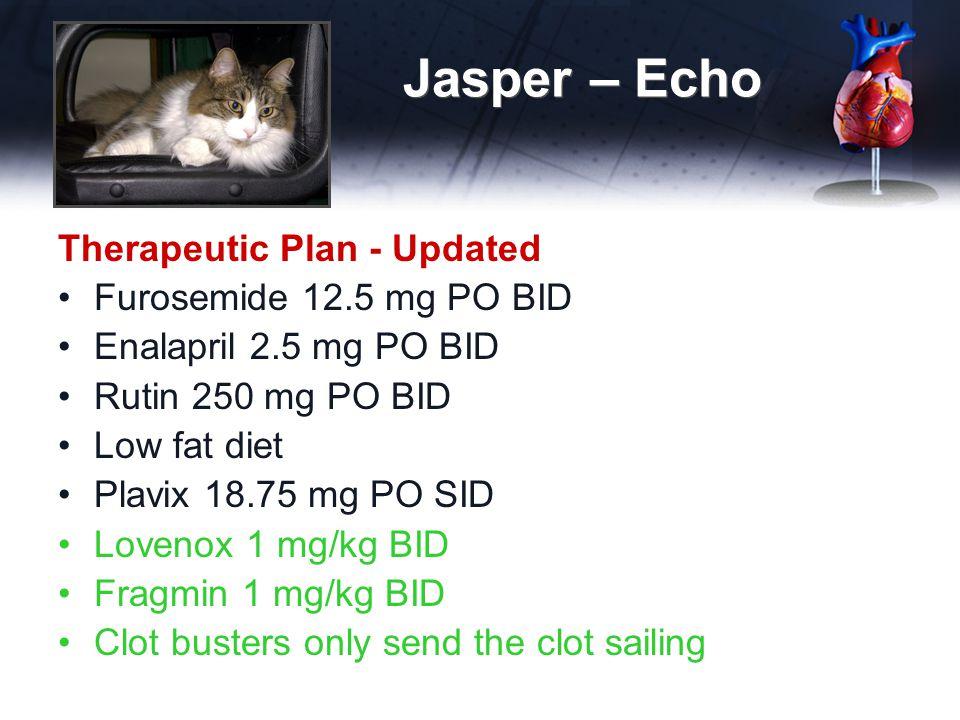 Jasper – Echo Therapeutic Plan - Updated Furosemide 12.5 mg PO BID Enalapril 2.5 mg PO BID Rutin 250 mg PO BID Low fat diet Plavix 18.75 mg PO SID Lovenox 1 mg/kg BID Fragmin 1 mg/kg BID Clot busters only send the clot sailing