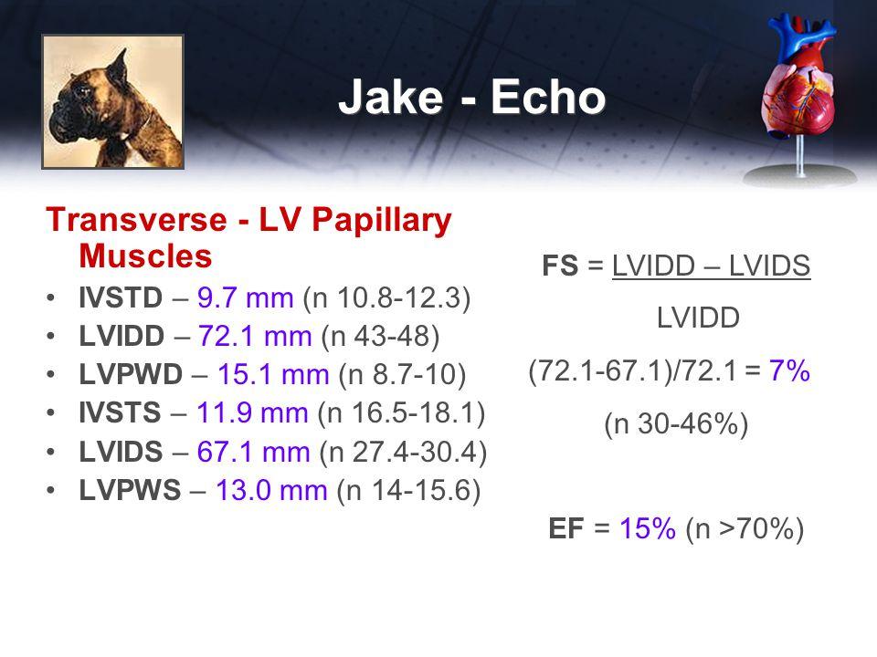 Jake - Echo Transverse - LV Papillary Muscles IVSTD – 9.7 mm (n 10.8-12.3) LVIDD – 72.1 mm (n 43-48) LVPWD – 15.1 mm (n 8.7-10) IVSTS – 11.9 mm (n 16.5-18.1) LVIDS – 67.1 mm (n 27.4-30.4) LVPWS – 13.0 mm (n 14-15.6) FS = LVIDD – LVIDS LVIDD (72.1-67.1)/72.1 = 7% (n 30-46%) EF = 15% (n >70%)