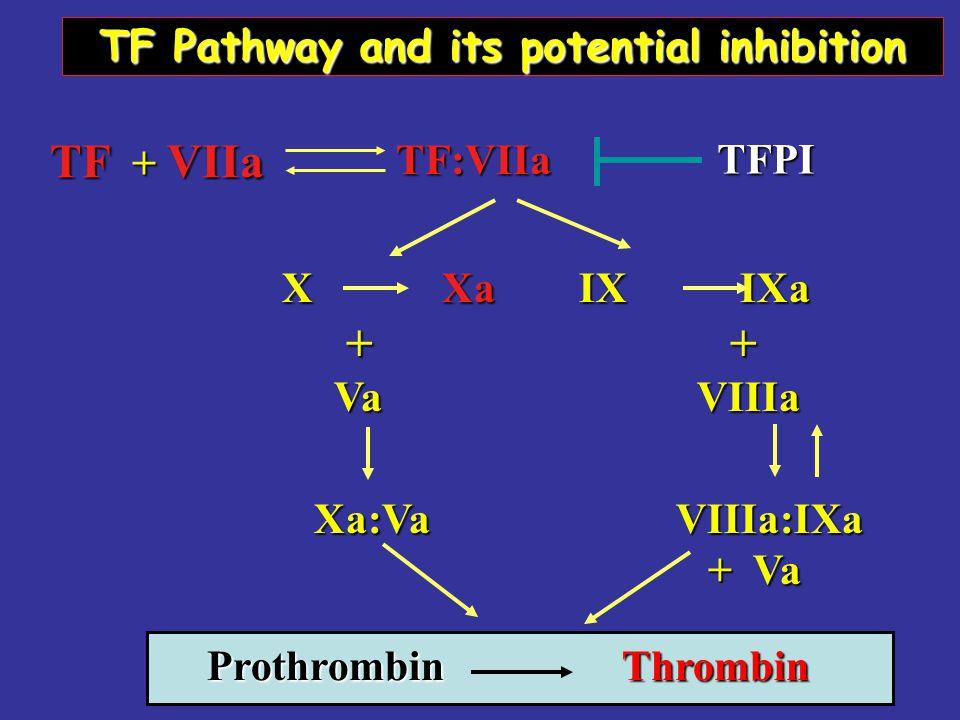 X Xa IX IXa X Xa IX IXa + + + + Va VIIIa Va VIIIa Xa:Va VIIIa:IXa Xa:Va VIIIa:IXa + Va + Va Prothrombin Thrombin TF + VIIa TF:VIIa TF:VIIa TF Pathway and its potential inhibition TFPI