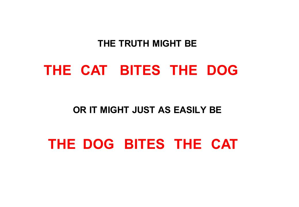 THE TRUTH MIGHT BE OR IT MIGHT JUST AS EASILY BE THEDOGCATTHEBITES THEDOGCATTHEBITES