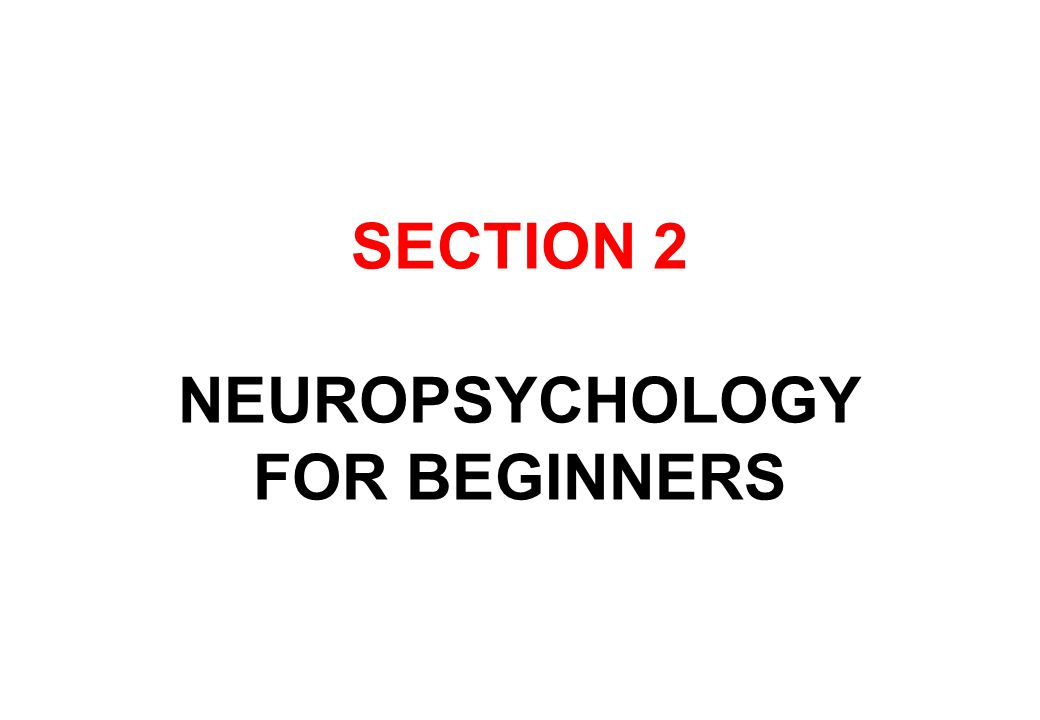 SECTION 2 NEUROPSYCHOLOGY FOR BEGINNERS