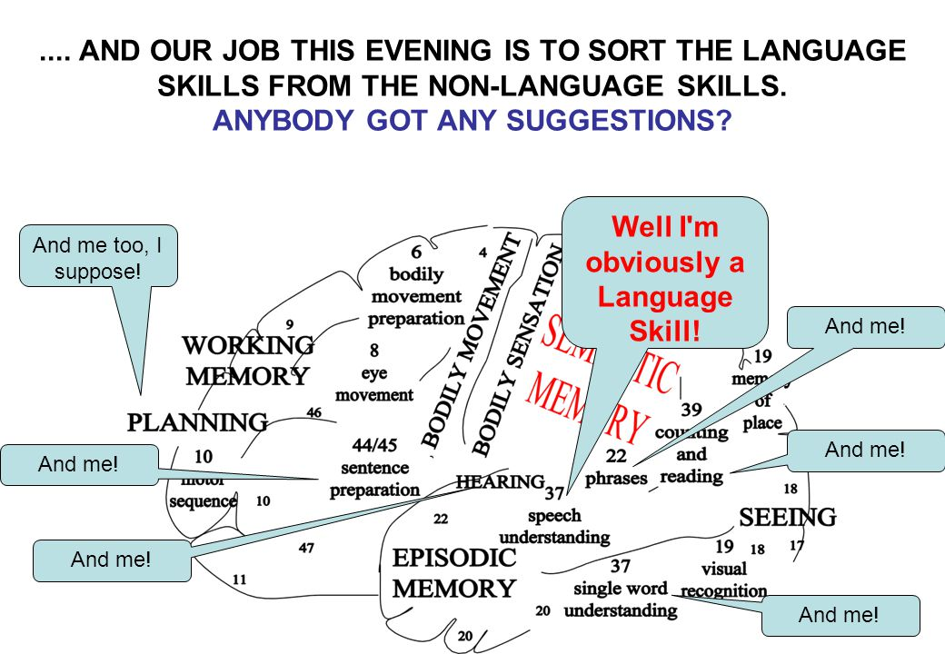 Well I'm obviously a Language Skill! And me! And me too, I suppose!.... AND OUR JOB THIS EVENING IS TO SORT THE LANGUAGE SKILLS FROM THE NON-LANGUAGE
