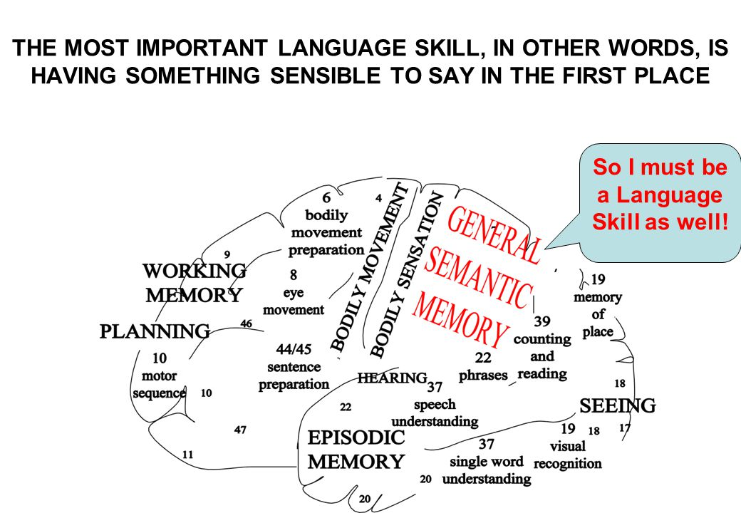 So I must be a Language Skill as well! THE MOST IMPORTANT LANGUAGE SKILL, IN OTHER WORDS, IS HAVING SOMETHING SENSIBLE TO SAY IN THE FIRST PLACE