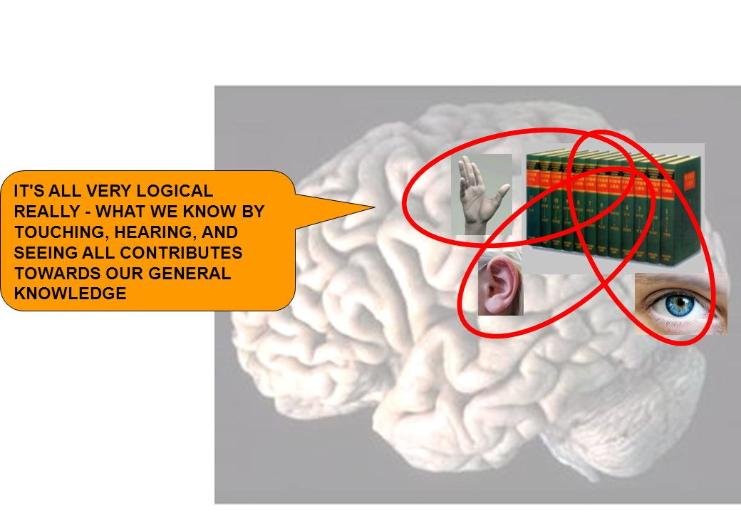 IT S ALL VERY LOGICAL REALLY - WHAT WE KNOW BY TOUCHING, HEARING, AND SEEING ALL CONTRIBUTES TOWARDS OUR GENERAL KNOWLEDGE