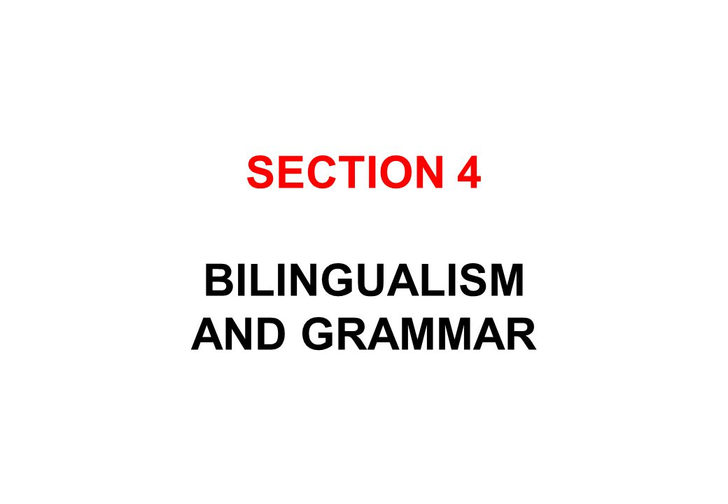 SECTION 4 BILINGUALISM AND GRAMMAR