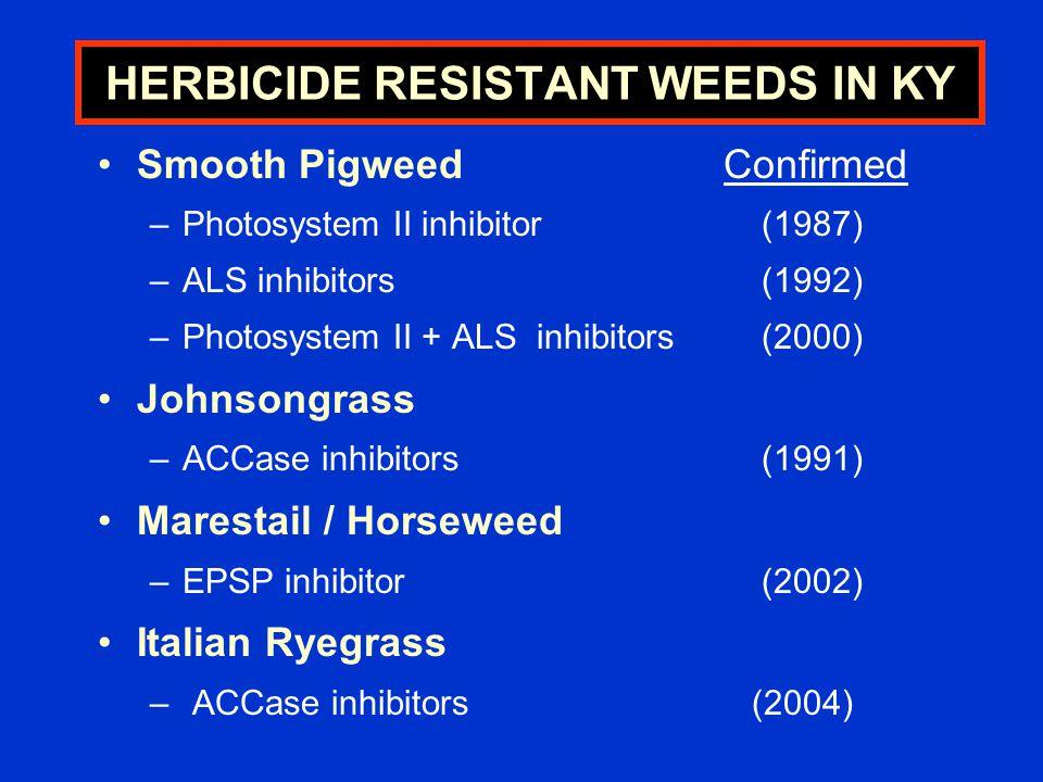 HERBICIDE RESISTANT WEEDS IN KY Smooth PigweedConfirmed –Photosystem II inhibitor (1987) –ALS inhibitors (1992) –Photosystem II + ALS inhibitors (2000) Johnsongrass –ACCase inhibitors (1991) Marestail / Horseweed –EPSP inhibitor (2002) Italian Ryegrass – ACCase inhibitors (2004)