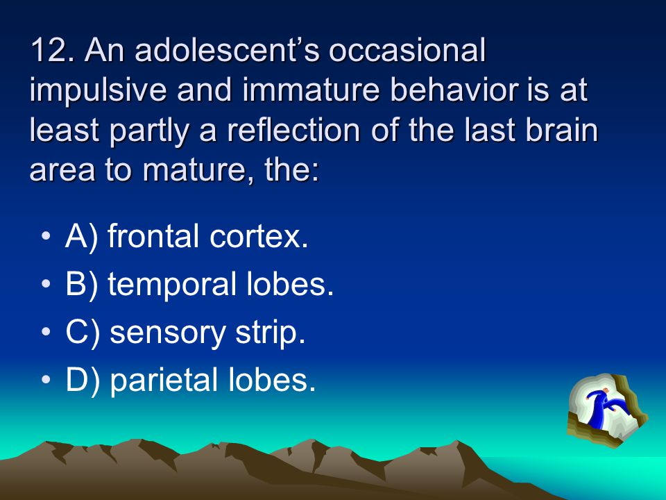 12. An adolescent's occasional impulsive and immature behavior is at least partly a reflection of the last brain area to mature, the: A) frontal corte