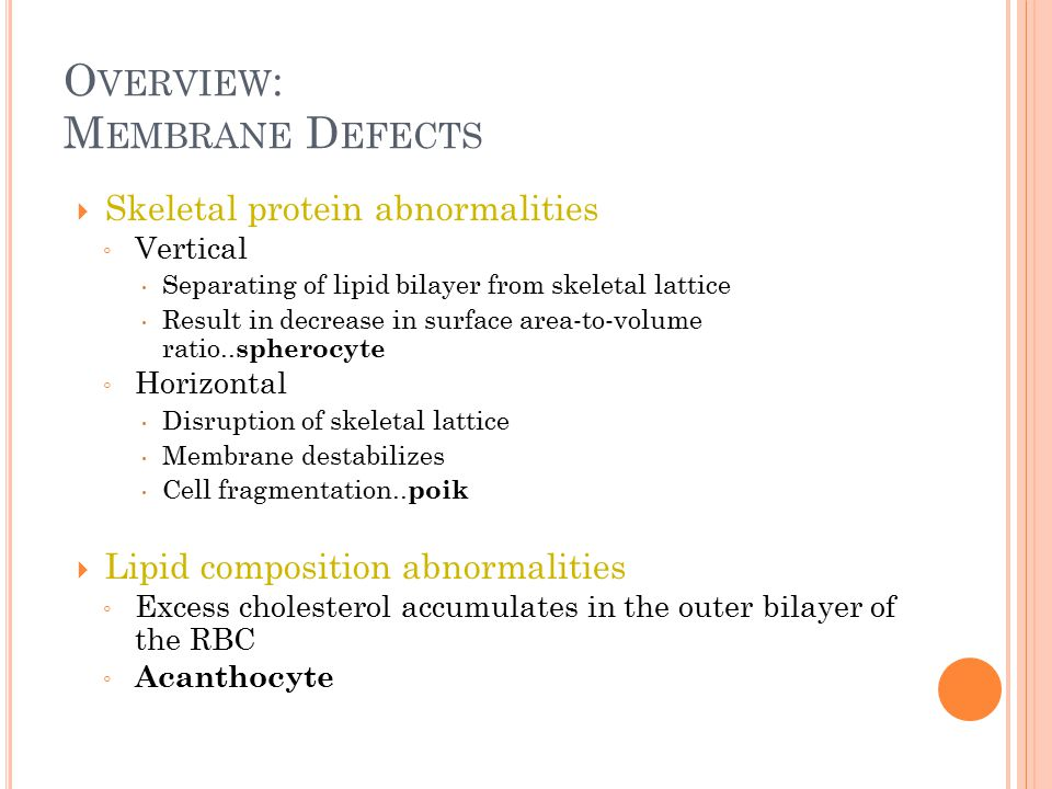 O VERVIEW : M EMBRANE D EFECTS  Skeletal protein abnormalities ◦ Vertical  Separating of lipid bilayer from skeletal lattice  Result in decrease in