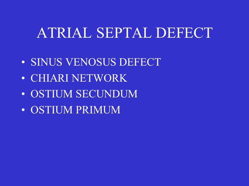 ATRIAL SEPTAL DEFECT SINUS VENOSUS DEFECT CHIARI NETWORK OSTIUM SECUNDUM OSTIUM PRIMUM