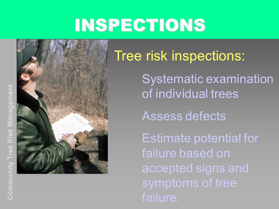 Community Tree Risk Management INSPECTIONS Tree risk inspections: Systematic examination of individual trees Assess defects Estimate potential for failure based on accepted signs and symptoms of tree failure.