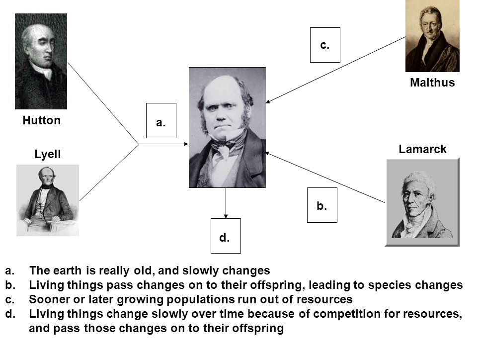a.The earth is really old, and slowly changes b.Living things pass changes on to their offspring, leading to species changes c.Sooner or later growing populations run out of resources d.Living things change slowly over time because of competition for resources, and pass those changes on to their offspring Hutton Lyell Malthus Lamarck a.