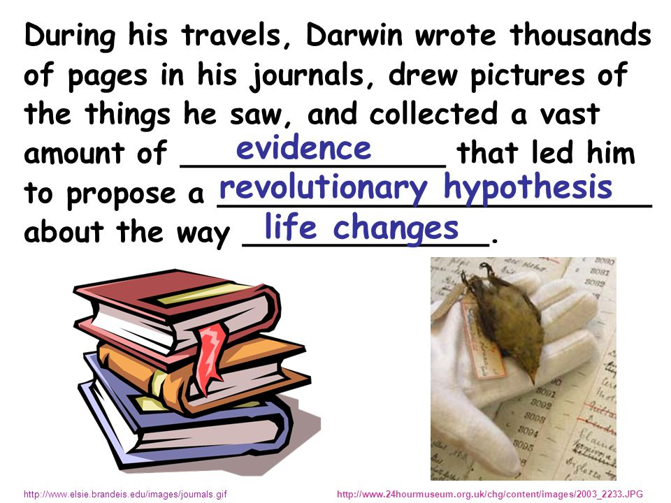 During his travels, Darwin wrote thousands of pages in his journals, drew pictures of the things he saw, and collected a vast amount of ______________ that led him to propose a _______________________ about the way _____________.