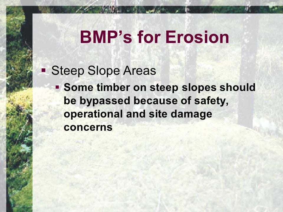  Steep Slope Areas  Some timber on steep slopes should be bypassed because of safety, operational and site damage concerns BMP's for Erosion